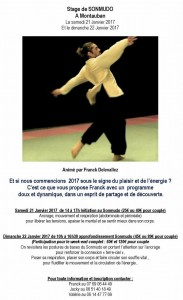 stage-franck-montauban