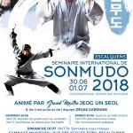 Séminaire des Maîtres Coréens du Sonmudo