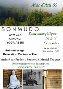 Sonmudo eveil énergetique (3)