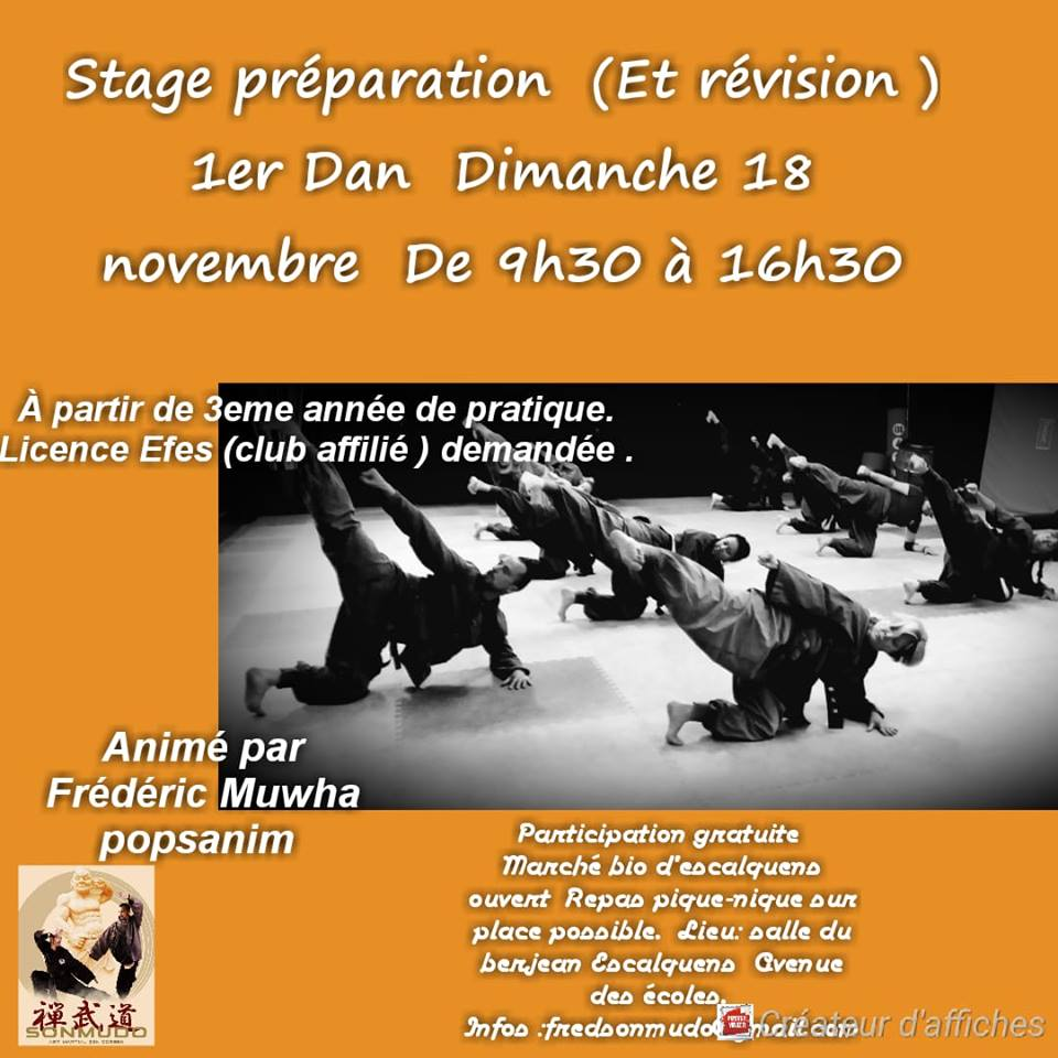 Stage Sonmudo- Vers le 1er Dan